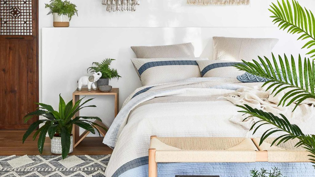 How plants in your bedroom improves your sleep